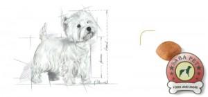 royal canin westie ad 18909-003