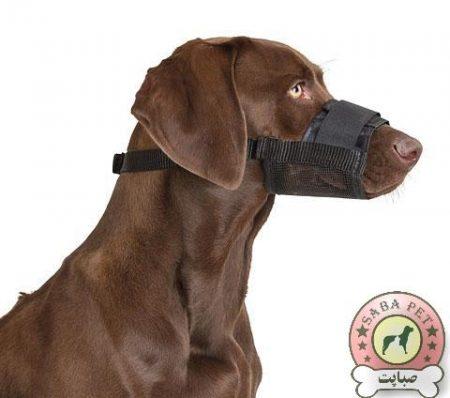 پوزه بند سگ