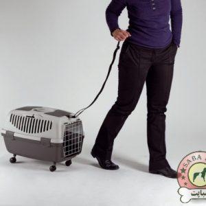 باکس حمل گربه و سگ