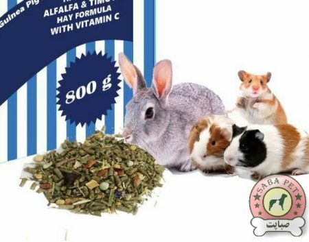 غذای خرگوش