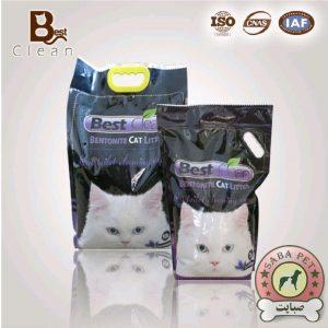 خاک گربه لوندر