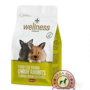 غذای بچه خرگوش